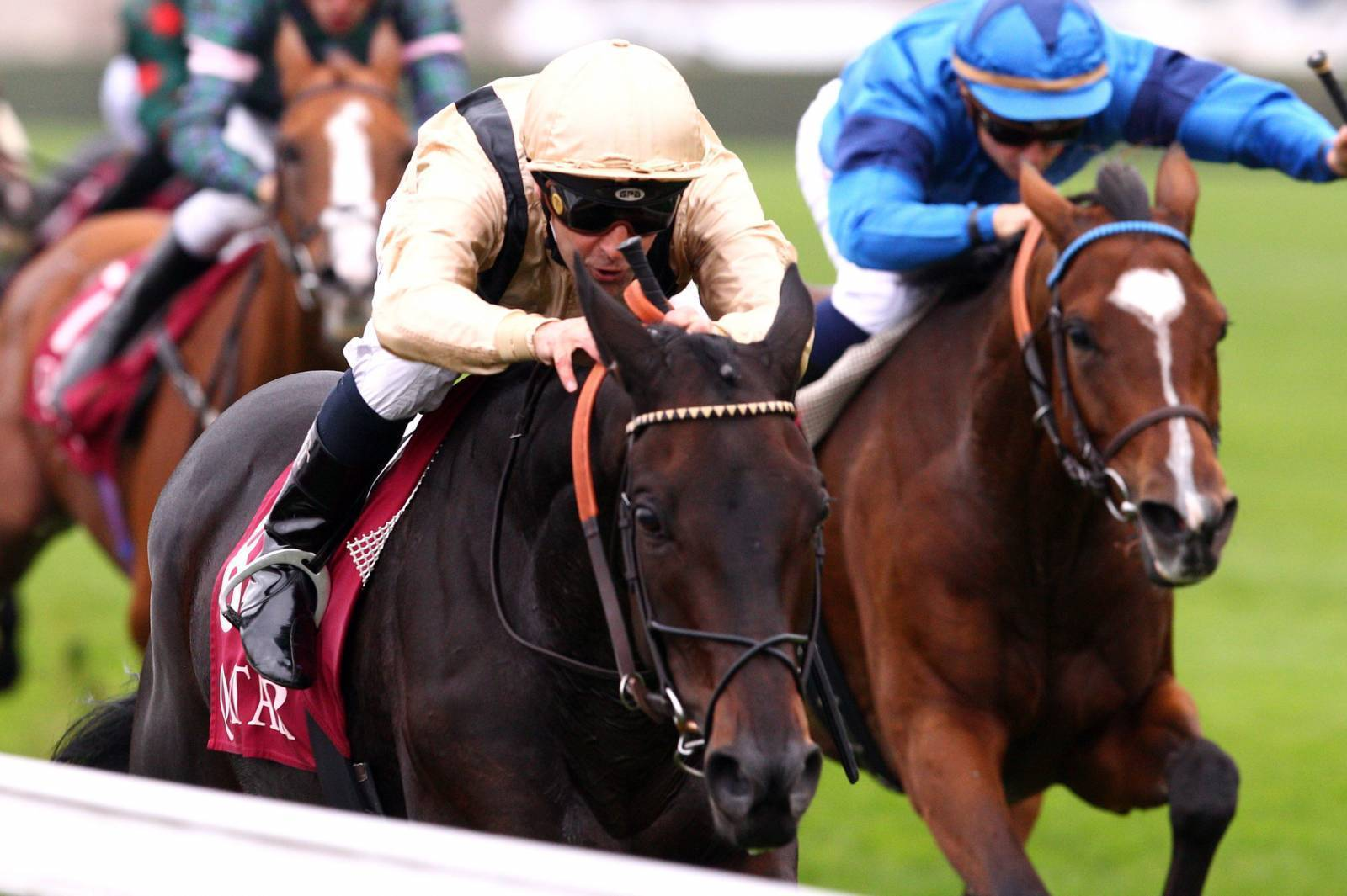 Longines World's Best Racehorse